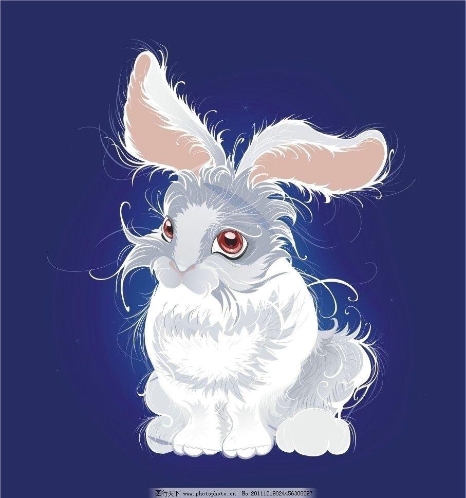 高清兔子 卡通兔 可爱
