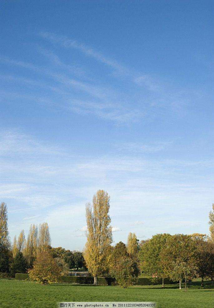 田园风光 蓝天 绿树 绿色 白云 红色 自然风景 自然景观 摄影