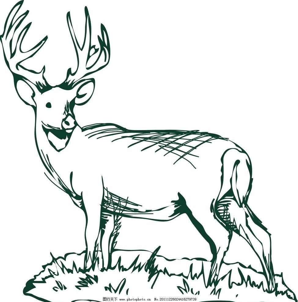 高清鹿手绘画