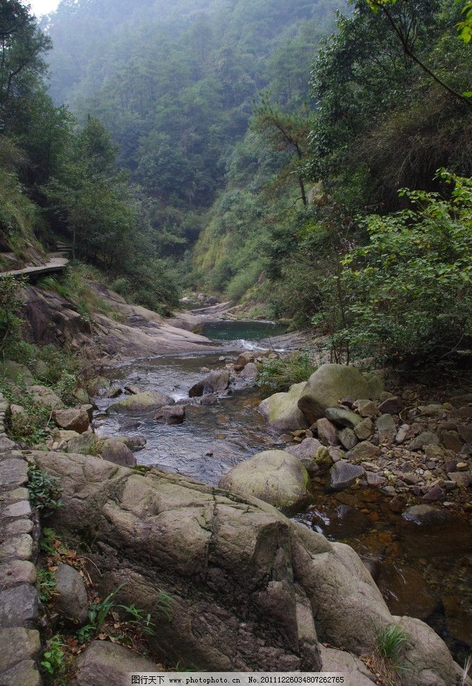 大千山旅游照片 浙江 国家森林公园 大千山 风景区 大山 石头 树木