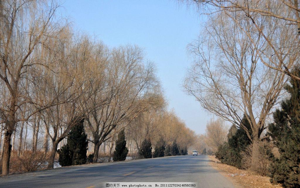 山道 大路 树木 山坡 冬天 天空 旅游摄影 自然风景