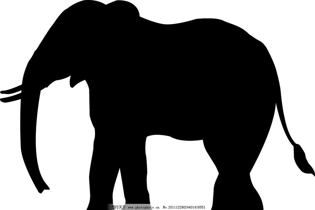 黑白大象图片