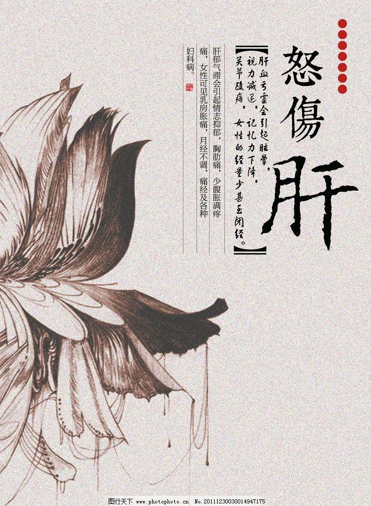 中式花卉图案养生系列海报图片