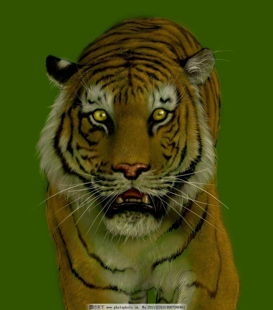 老虎电脑绘画图片
